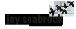 Jay Seabrook